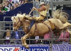 WHO WILL PERFORM IN HOUSTON LIVESTOCK SHOW 2020